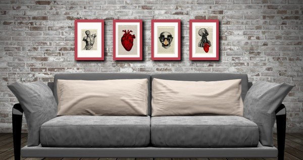 framed anatomical display