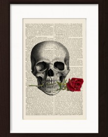 Skull With Red Rose In Teeth print