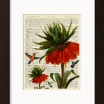 Hummingbirds With Red Flower print