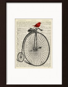 Red Bird On Penny Farthing Bicycle print