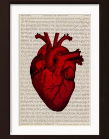 Anatomical Red Heart print