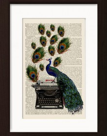 Peacock On Vintage Typewriter print
