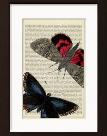 Red And Blue Moths Butterflies print