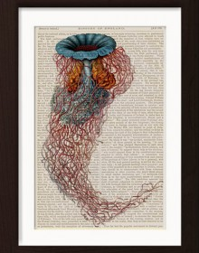 Ernst Haeckel Red Blue Jelly Fish 3 print