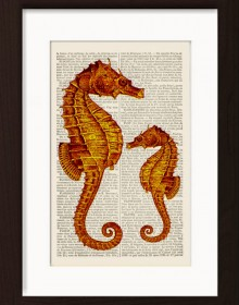 Orange Marine Sea Horses print